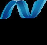 .NET FrameWork v4